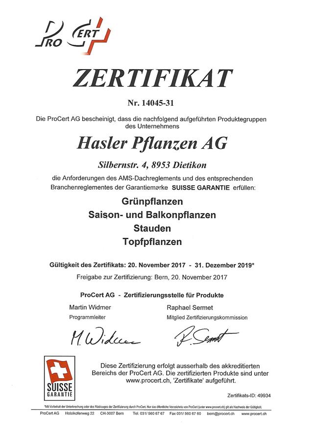 Hasler Pflanzen AG :: Betrieb